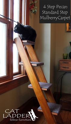 Cats Toys Ideas - This ladder for your cat to perch on, which is also very aesthetically pleasing. - Ideal toys for small cats Cat Club, Cat Towers, Ideal Toys, Cat Shelves, Photo Chat, Cat Enclosure, Cat Condo, Cat Room, Pet Furniture
