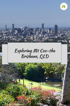 Mt Coo-tha is a wonderful area of Brisbane to spend a day or two exploring. #mtcootha #brisbane