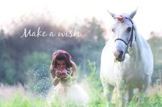 Unicorn Photos, Make A Wish, Family Photography, Photo Shoot, Portraits, Horses, In This Moment, Couples, Friends