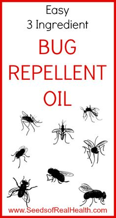 Easy Bug Repellent Oil - Seeds of Real Health