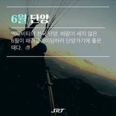 Zqima Travel Tours, Travel Information, Korean, Life, Korean Language
