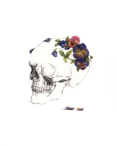 Pansy For Your Thoughts by Meagan Segal © 2012 #skull #pansy #flowers #painting #watercolor #drawing #bones #skeleton #anatomy