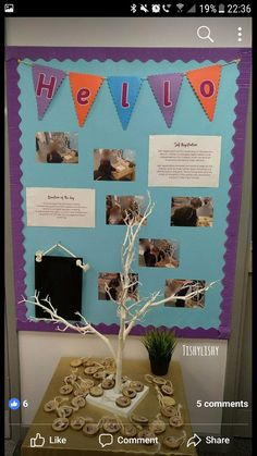 Self registration tree. Each child has a disc with their name on one side and ph. Self registration tree. Each child has a disc with their name on one side and photo on the other. Reggio Emilia Classroom, Reggio Classroom, Classroom Layout, Classroom Organisation, New Classroom, Classroom Setting, Classroom Ideas, Early Years Displays, Class Displays