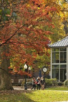 Franklin and Marshall College College Costs, Financial Aid For College, New College, College Essay, College Campus, Education College, First Year Student, Student Life, Liberal Arts College