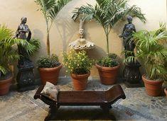Building A Mexican Themed Garden & Backyard