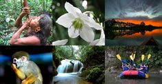 ecuador paisajes collage - Buscar con Google Ecuador, Paradise, To Go, Vacation, Pets, Animals, Amazon, Places, Google