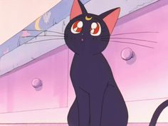 Screencap Aesthetic — Sailor Moon Episode 7 Aesthetic Part 2 Part 1 -. Kawaii Wallpaper, Cute Wallpaper Backgrounds, Cartoon Wallpaper, Anime Fnaf, Haikyuu Anime, Kawaii Anime, Sailor Moon Cat, Sailor Moon Crystal, Sailor Moon Aesthetic