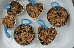 Bird seed bars - kids craft idea