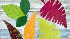 VIDEO.   HOJAS DE PAPEL | FLORES GIGANTES DE PAPEL | HOJAS DE PAPEL | HOJAS PARA FLORES GIGANTES DE PAPEL |   Cómo puedes realizar 4 ESTILOS DIF de HOJAS DE PAPEL, puedes darle tu toque personal y dependiendo de los papeles y los colores que utilices, obtendrás resultados increíbles!!