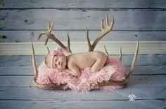 Absolutely love the deer antlers