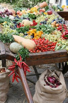 A mix of colourful, fresh vegetables spilling over the edges of an old wooden cart in Tuscany