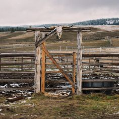 Best Western home Decor Farm Fence, Farm Barn, Cowboy Ranch, Horse Fencing, Ranch Style Homes, Ranch Life, Western Homes, Entrance Gates, Rustic Style