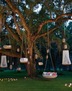 Outdoor cinema - A cozy shell for experiencing the outdoors Dedon the iconic Swingrest collection is enriched with new versions Backyard Patio, Backyard Landscaping, Backyard Hammock, Backyard Playground, Hanging Furniture, Outdoor Furniture, Hanging Chair, Pool Furniture, Furniture Ideas
