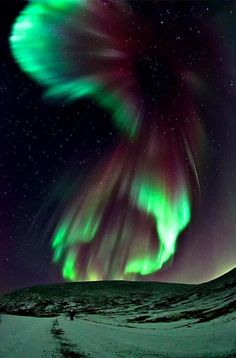 Would love to see the Aurora Borealis of this magnitude! Aurora Borealis over Minot, North Dakota Tromso, Northen Lights, Ciel Nocturne, See The Northern Lights, Space Photos, Photos Voyages, Natural Phenomena, Beautiful Sky, Science And Nature