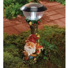 Knomes Construction Backyard Ideas Html on