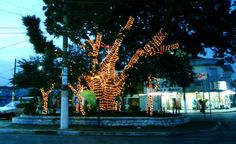 Natal na Praça Monsenhor Ciro Turino (2000) Foto: Wilson Simão