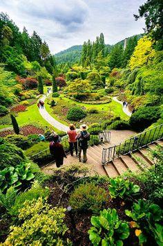 Butchart Gardens,BC,Canada  https://plus.google.com/u/0/