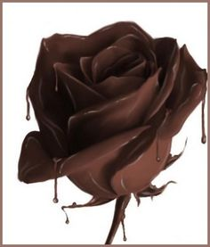 Beautiful Chocolate Rose