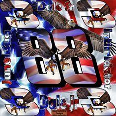 dale sr and jr american eagle wallpaper that i created hope you all enjoy   black Lightning