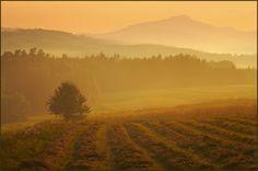 Autumn in Tatry 1 by Castillion