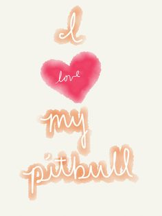 I love pitbull American Pit, I Love Dogs, Puppy Love, Animals Beautiful, Cute Animals, Pit Bull Love, Pitbull Terrier, Dog Life, Cool Words