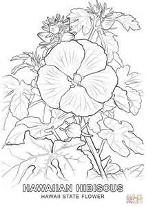 clover flower geranium flower tulip flower american states empire hawaii state flower coloring page