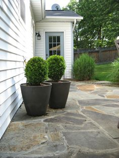 For Denise - Flagstone patio in mixed colors.