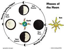 Moon phases for astronomy section using oreos. Found in the kids section of NASA... lots of other cool stuff too.