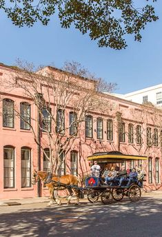 Charleston, South Carolina Travel Guide featuring Instagram-worthy buildings, restaurants, shopping, and more.