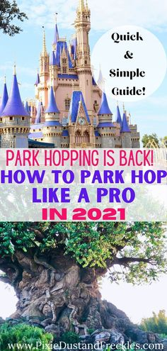How to Park Hop Like a Pro in 2021