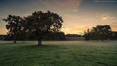 Misty Fields , Lazonby, Cumbria