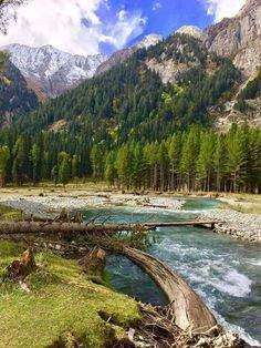 So beautiful photography of Kurmat valley Dir kpk Pakistan Angels In Heaven, Heaven On Earth, Forest Landscape, Natural Scenery, Hiking Trails, Beautiful World, The Great Outdoors, The Good Place, Nature Photography