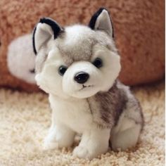 Simulation Husky Dog Plush Stuffed Toy For Kids
