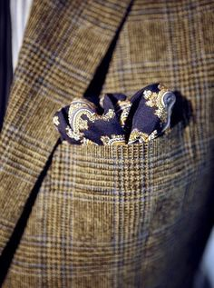 Tweed and paisley. A great country gent look Classic Men, Classic Style, My Style, Gentleman Mode, Gentleman Style, Sharp Dressed Man, Well Dressed Men, Tie And Pocket Square, Pocket Squares