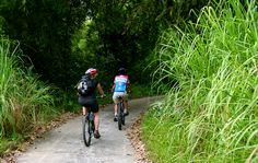 Vietnam Biking Tours offer adventure biking tours in Vietnam. Mountain biking tours in Vietnam, great biking tours in Sapa, Vietnam biking tours in Mai Chau
