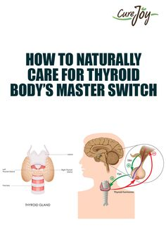 How To Naturally Care For Thyroid- Body's Master Switch. ==>