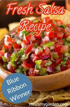We love this quick and easy homemade salsa recipe. With only 5 ingredients needed and about 3 minutes from start to finish you can enjoy this salsa recipe in no time. It gets gobbled up even by picky eaters. This homemade salsa recipe is a keeper. Tomato Salsa Recipe, Fresh Tomato Recipes, Fresh Tomato Salsa, Easy Pasta Recipes, Easy Chicken Recipes, Appetizer Recipes, Easy Meals, Cooking Recipes, Garden Fresh Salsa Recipe
