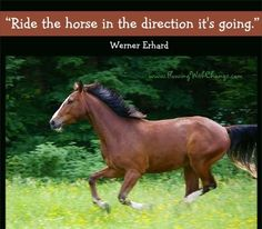 Horse quote via FlowingWithChange.com