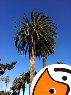 Swipp California Weather