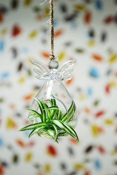 Vases – Angel Glass Vase Planter with Spider Plant, handmade home decoration – a unique product by DingaDing via en.dawanda.com