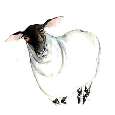 Becky Brown | WATERCOLOR and INK | Sheep