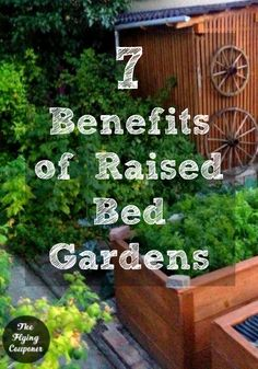 7 Benefits of Raised Bed Gardens. Spring is finally here and it is already time to start planning your garden. Flowers and vegetables. The Flying Couponer