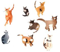 Lesley Buckingham | Illustrators | Central Illustration Agency