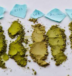 Matcha Green Tea Reviews