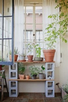 Cinder block furniture on pinterest cinder block shelves for Cinder block plant shelf