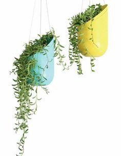 52 Ideas For Hanging Succulent Terrarium Diy Plastic Bottle Planter, Plastic Bottle Crafts, Recycle Plastic Bottles, Garden Ideas With Plastic Bottles, Plastic Bottle Decoration, Plastic Bottle House, Soda Bottle Crafts, Diy Hanging Planter, Hanging Succulents