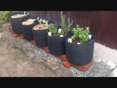 The Rain Gutter Grow System Truly Goes International! Check It Out! a Canadian in Japan