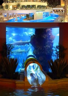 """No, we're not talking about the fish aquariums you can buy from your local pet shop, but rather ones you have to pay good money to see. Above, we have """"The Tank"""" at the Golden Nugget Resort and Casino in Las Vegas. Continue reading to see more."""