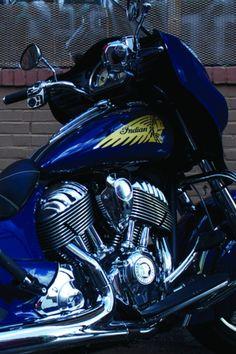 Blue Chieftain'