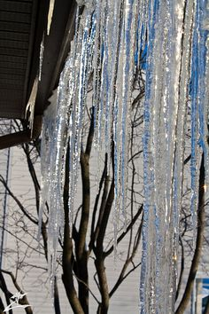 Icicles on Blue Sky